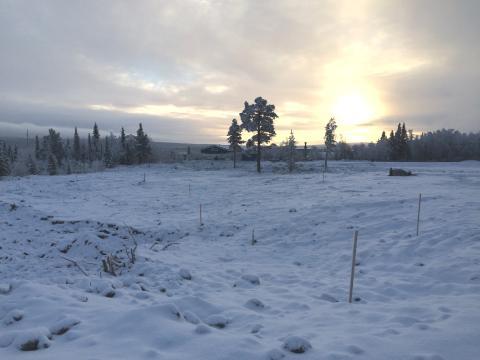 Marken där Kirunas nya centrumkärna ska stå