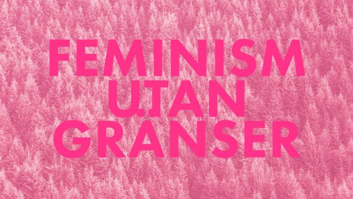 Finland får ett feministiskt parti