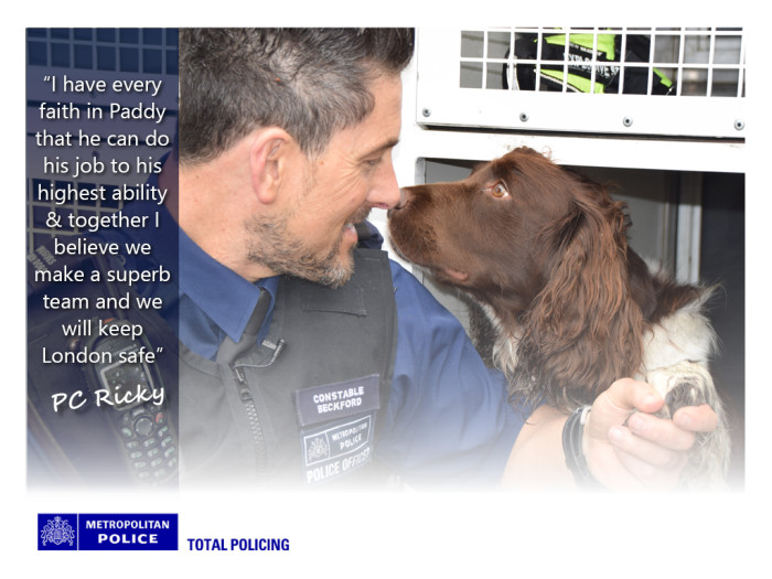 Quote from Paddy's handler, PC Ricky Beckford