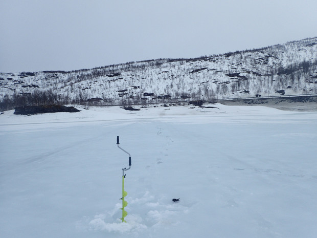 jakterreng på åremål