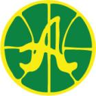 Alvik Basket