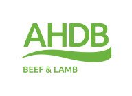 AHDB BEEF & LAMB TRADE MARKETING
