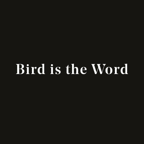 Gå till Bird is the Words nyhetsrum