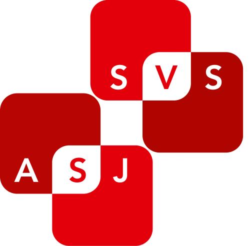 Zum Newsroom von Spielwaren Verband Schweiz SVS
