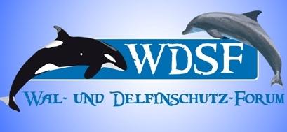 Zum Newsroom von Wal- und Delfinschutz-Forum gUG (WDSF)