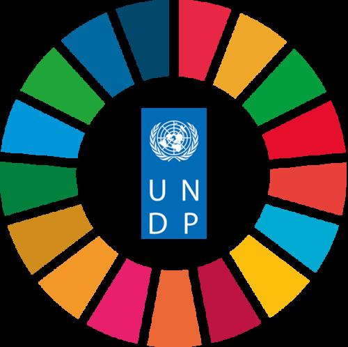 Gå till UNDPs nyhetsrum