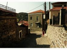 En smakfull resa till Lesvos, presenterad av Fontanas vd Loizos Papadopoulos