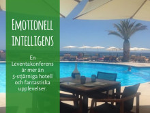Emotionell intelligens med Leventakonferenser