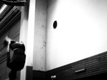 Stockholmslaget KFUM tränar hisnande volter inför Nordiska Mästerskapen i truppgymnastik i Norge den 12 nov