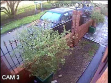 CCTV of Ali entering the park