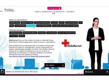 Anhöriga i fokus - Samverkan mellan offentlig verksamhet och frivillig- och intresseorganisationer