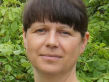 Vicki Wenander