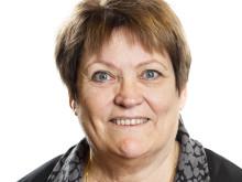 Stadsrevisionen - Vivi-Ann Nilsson