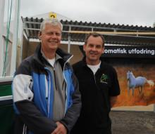 Stora Nolia i Piteå - Här finns något för alla, även för hästägarna!