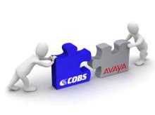 COBS IP-DECT CWS6000 - Nu Avaya kompatibel!