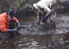 Tjörns kommun slutar med farligt medel