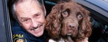 Murphy är Årets Narkotikasökhund