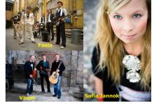 Artisterna klara till Folk & Världsmusikgalan