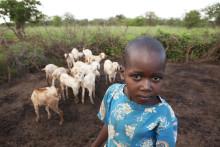 Vernissage för Barnfondens fotoutställning under Malmöfestivalen - foton från bland annat Mali och Indien.
