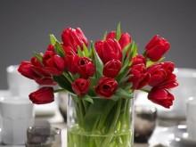 Alla Hjärtans Tulpaner bland mat och kastruller
