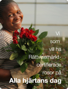 Morotsmobbar i Jönköping inför alla hjärtans dag