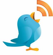 Induo fortsätter satsa på sociala medier