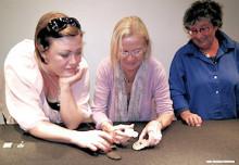 Theresia Hvorslevs stipendium 2010