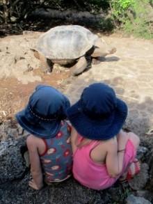 Familjen Hammarberg besöker Galapagosöarna