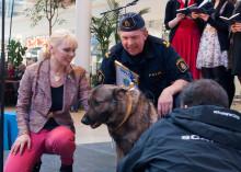 Hunden Tiger är Årets Trafikhjälte