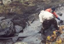 HaV kräver miljövänligare oljesanering
