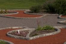 Kunskapens träd invigs i Botaniska trädgården