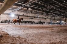 Hästarna intar Jönköping under fem dagar.