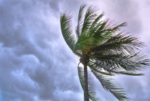 Så påverkas Norden av orkanen Dorian