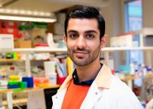 Anders Wall-stipendium till ung läkare som inspirerar fler att forska