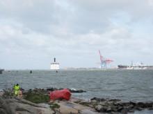Samarbete utmed kusten ger renare stränder