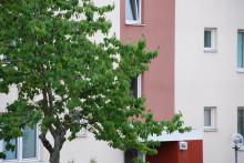Hyresgästföreningen förhandlar för fler på Gotland