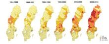 Klimatförändringar drabbar svensk renskötsel samtidigt som harpest ökar kraftigt