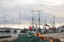 Nordiskt kunskapsnätverk mot spökfiske