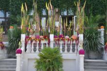 Den stora Trädgårdsfesten