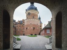 Nationalmuseum visar ny sida av Dawid på Gripsholm i sommar