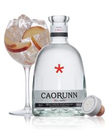 Skottlands somrigaste drink: Caorunn Gin & Tonic