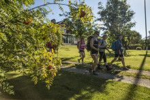 ​More people discover St. Olavsleden trail