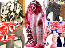 Final countdown of UK Elephant Parade auction