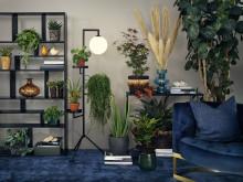 Interflora presenterar årets höstkollektion