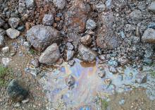 Naturligt organiskt material kan misstas för oljeförorening