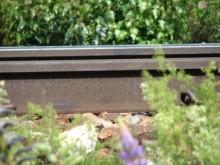 Pressinbjudan Tågstopp på försök i Avesta kommun