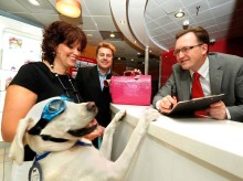Pooch Power Helps Drive Holidog Trend