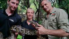Djurvårdselever på Realgymnasiet erbjuds ny APL-plats i Sydafrika