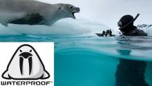 Waterproof Diving väljer Itero och Dynamics NAV