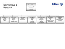 Allianz Commercial and Personal Management Structure